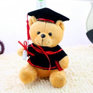 Gấu bông tốt nghiệp Dr.bear - Quà tặng trong ngày lễ tốt nghiệp