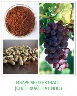 IBPHARCO chuyên cung cấp các nguyên liệu làm đẹp từ thiên nhiên