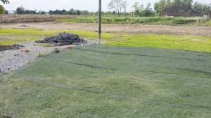 Cần bán gấp 15 lô đất lẻ ngay KCN Đặng Huỳnh cách ngã ba Tân Kim 800m giá chỉ từ 400 tr/nền - SHR.
