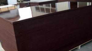 Chuyên cung cấp ván ép phủ phim 12mm 15mm 18mm