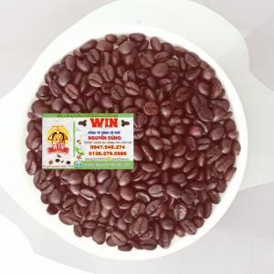 Cung cấp cà phê hạt rang nguyên chất Buôn Ma Thuột 2017