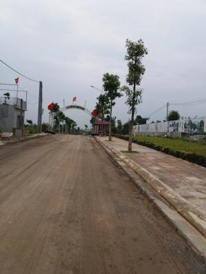 Mở bán đợt đầu dự án Phú Cát City, Thạch Hòa, Thạch Thất
