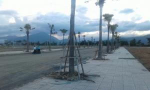 Chính chủ bán lô đất Phan Văn Định giáp Nguyễn An Ninh để có tiền sửa nhà sau bão ở quê