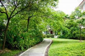 Sang Nhượng Căn Hộ Cao Cấp Eco Xuân, Lái Thiêu, Bình Dương