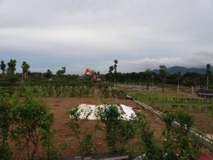 Sở hữu ngay đất nền biệt thự Phú Cát City, Thạch Hòa, Thạch Thất, HN với nhiều ưu đãi hấp dẫn.