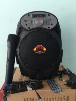 Loa karaoke mini-loa bluetooth -loa karaoke xách tay tặng 2 mic