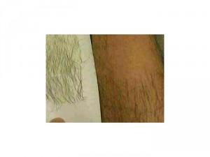 Wax lông