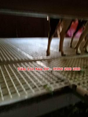 Sàn dê / tấm lót sàn dê/ tấm nhựa lót sàn chuồng dê