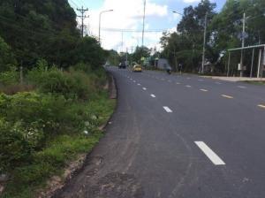 Bán đất nền Đường Cây thông ngoài, Phú Quốc.