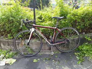 Roadbike WISSCO, nhập khẩu