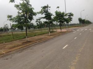 Cần bán một số nền đất đẹp tại Nam Vĩnh Yên