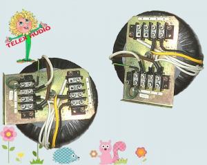 BACL XUYẾN NHẬT 1,2 kva, cân nặng 10 kg , điện vào 220v, điện ra 100v,120v, 220v, giá