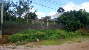 Bán đất tại đường Quốc Lộ 20, Xã Liên Nghĩa, Đức Trọng, Lâm Đồng, diện tích 400m2