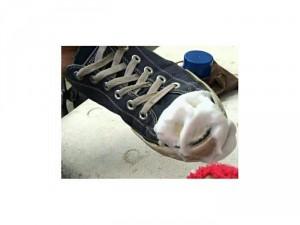 Bọt làm sạch giầy siêu nhanh