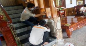 Dịch vụ diệt mối tại nhà ở - TPHCM