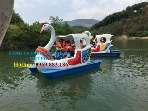 Thiên nga đạp nước: Tại công viên di sản tiến sĩ Việt Nam