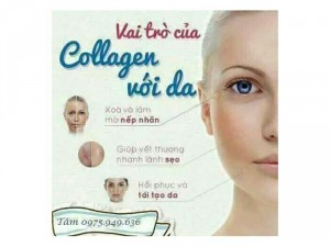 Collagen tươi Linh Hương