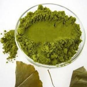 Gingko Biloba Extract - Chiết Xuất Lá Cây Bạch Quả