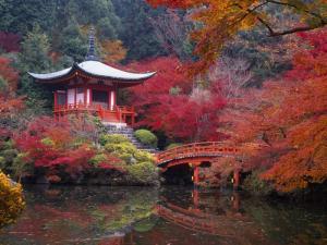 Tour Nhật Bản - Giá Rẻ Bất Ngờ