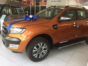 Hiện tại, Ford Ranger tiếp tục được nhập khẩu trực tiếp từ Thái Lan với 4 tùy chọn và giá bán như sau: Ford Ranger 2.2L XLS 4x2 (hộp số sàn 6 cấp): 630.000.000 VNĐ Ford Ranger 2.2L XLS 4x2 (hộp số tự động 6 cấp): 655.000.000 VNĐ Ford Ranger 2.2L XLT 4x4 (hộp số sàn 6 cấp): 730.000.000 VNĐ Ford Ranger 3.2L Wildtrak 4x4 (hộp số tự động 6 cấp): 880.000.000 VNĐ