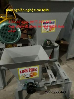 Xả kho máy xay nghiền nghệ tươi loại nhỏ