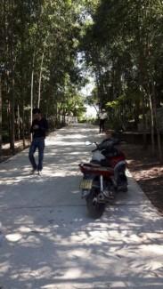 Chỉ còn 1 lô tại Quảng Tế gần Điện Biên Phủ