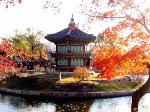 Khám phá mùa thu Hàn Quốc-giá thật hấp dận.