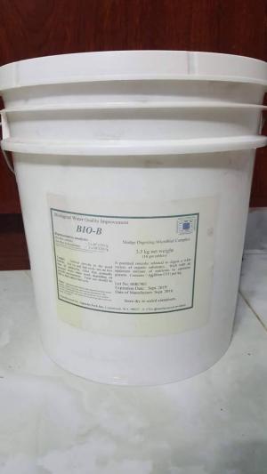 Men vi sinh xử lý đáy, khử khí độc Bio-b