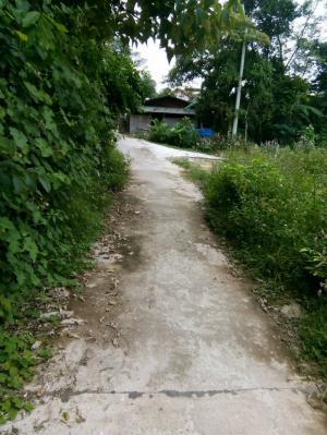 Bán Đất Kiêt Đường Thanh Hải ,Huế