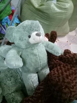 Bán gấu bông Zamy giảm 50% với mã 35