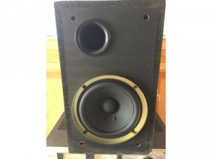Súp bass Yamaha W-30
