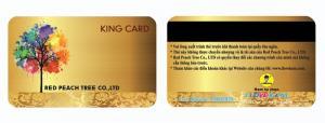 In thẻ nhựa - Vip card chuyên nghiệp - Giá rẻ - Lấy ngay
