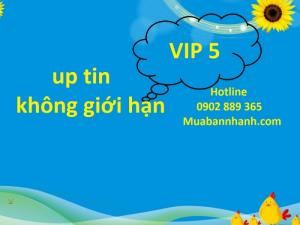 VIP 5 Up tin không giới hạn trên Muabannhanh.com