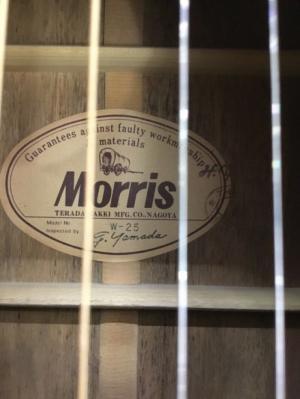 Acoustic Guitar Morris W-25