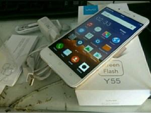 ViVo Y55s
