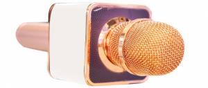 Micro karaoke bluetooth kèm loa SD 08 loại 1