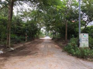 Bán gấp lô đất khu đô thị mới Vạn Lộc Tây Nam Cường Tp Hải Dương Chỉ 800 triệu