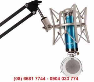 Micro thu âm Ami V9