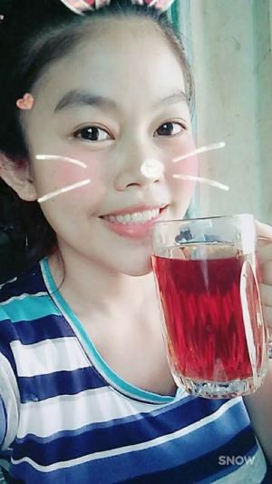 trà bí đao phương vân , trà bí đao giảm cân