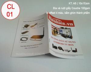 In Catalogue In tờ rơi In túi giấy  kim nhật long