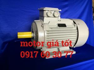 Động cơ motor 3 pha giá tốt tại TP HCM