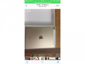 Ipad air2 gold 4g+wifi 64gb