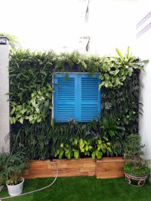 Thiết kế tường cây, vườn đứng giá tốt Đà Nẵng