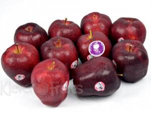Bán giống cây táo tây (táo Mỹ)
