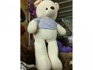 Gấu Teddy giá rẻ