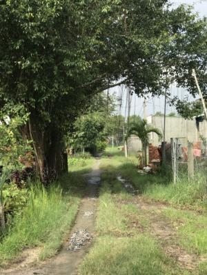 Bán đất nền giá rẻ 150m2 ở Hòa Khánh Đông, Long An