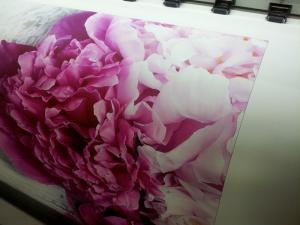 Nếu bạn muốn in tranh ảnh nghệ thuật, in tranh khổ lớn hay dùng làm trang trí không gian thì nên chọn chất liệu canvas - liên hệ ngay In Kỹ Thuật Số