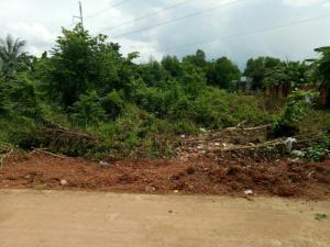 Bán đất Tân Phú, Đồng Phú, Bình Phước