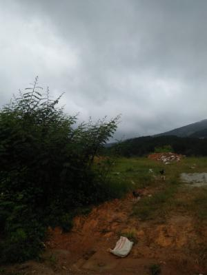 Bán đất làm homestay , view đồi thông , gần trung tâm thành phố