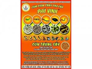 Côn trùng sấy Phú Vinh
